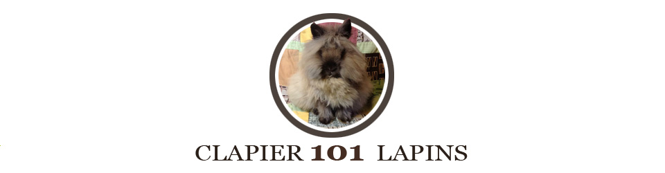 clapier 101 lapins. Black Bedroom Furniture Sets. Home Design Ideas